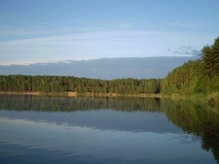 Дивовижна краса природи на озері