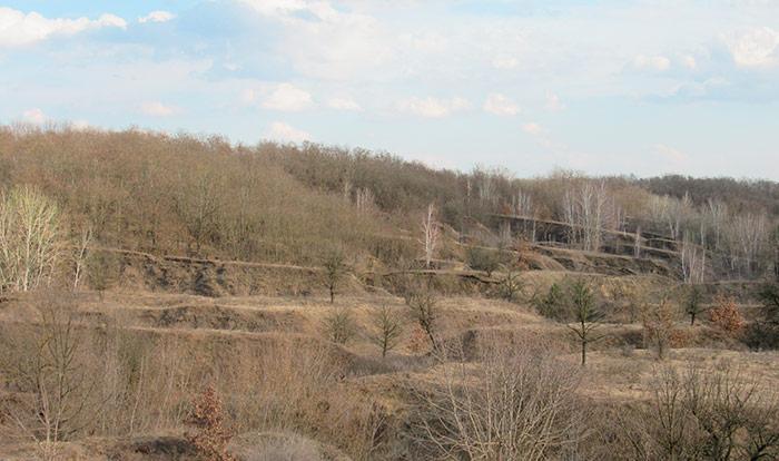 Пагорби за межами парку «Київська Русь»