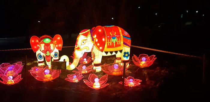 Який же Китай без слонів?