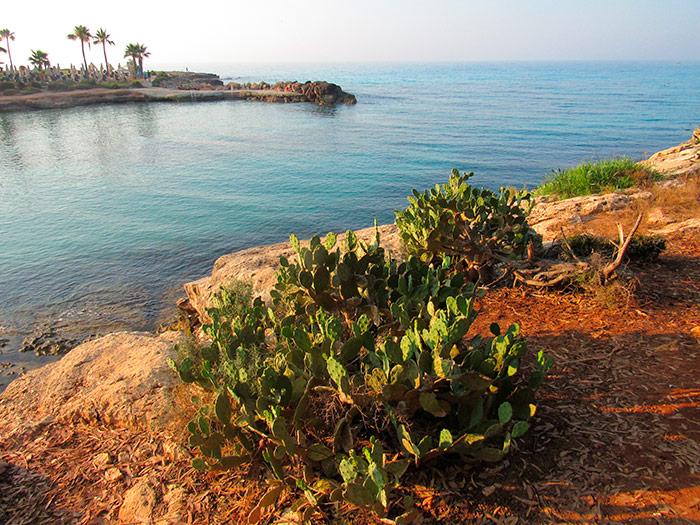Пляж Адамс вранці з іншого боку