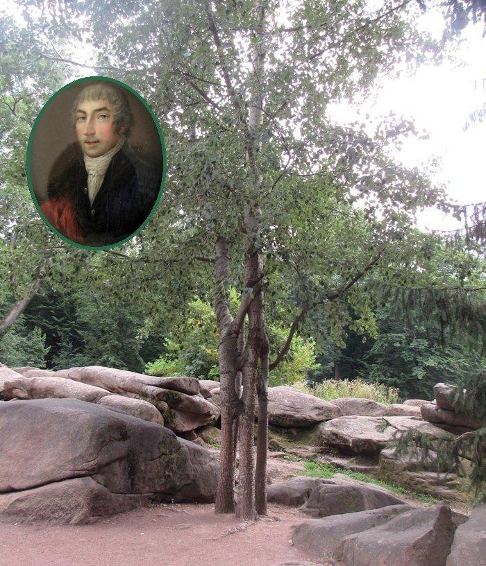 Сімейне дерево та Єжи Потоцький