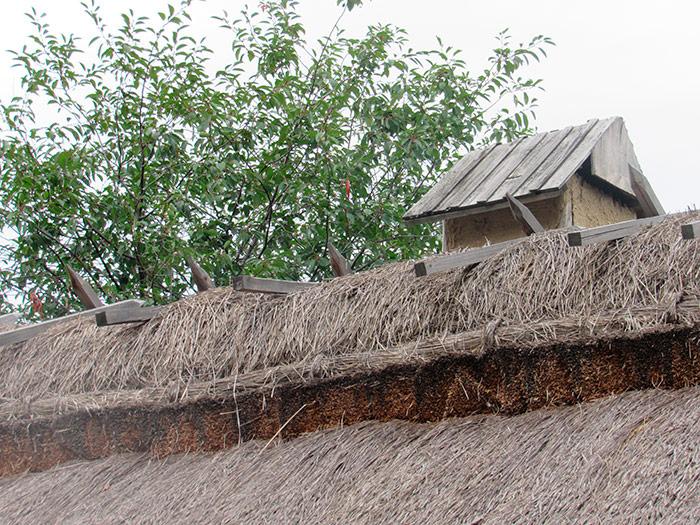 Загострені палиці на покрівлі