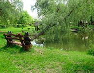 Відпочинок на платному озері в Київській області