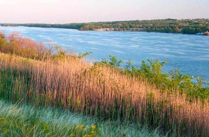 Висячі болота