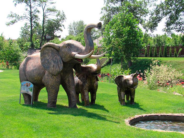 Слон Наумана