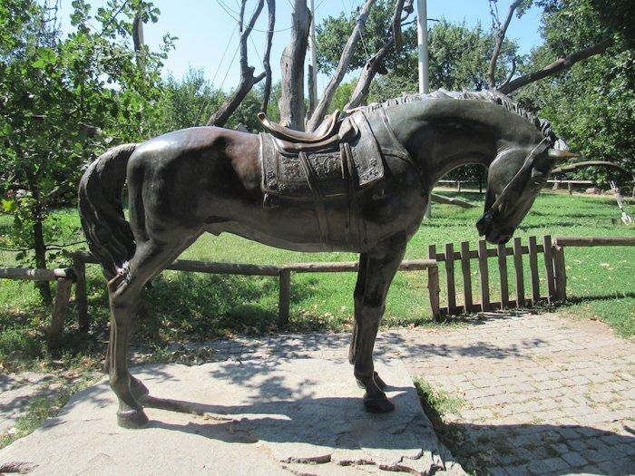 Вірний козацький кінь