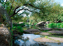 Древлянський парк в центрі міста Коростень