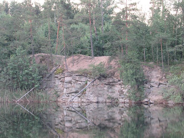 Хвойні ліси на березі озера