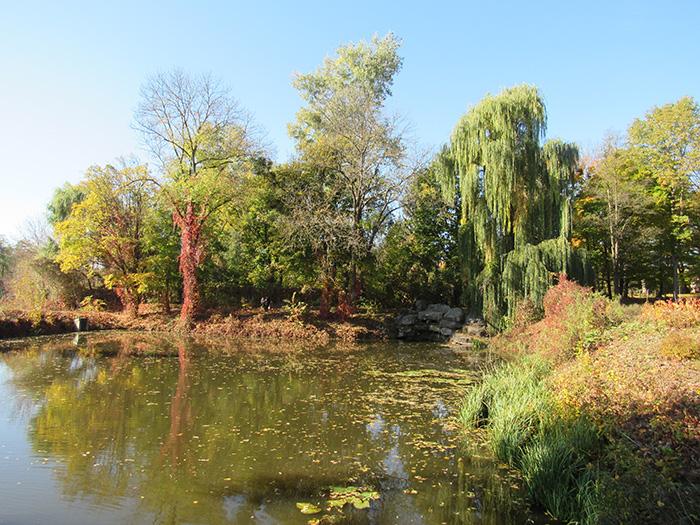 Озеро з водоспадом «Черепаха»