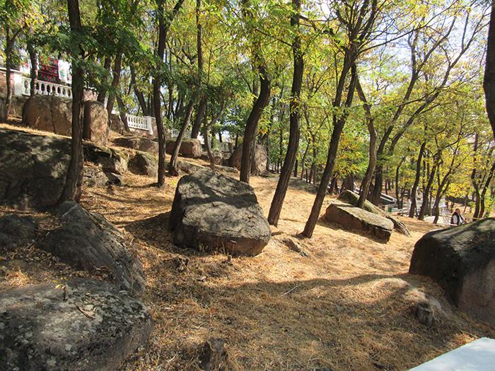 Природа Древлянського парку