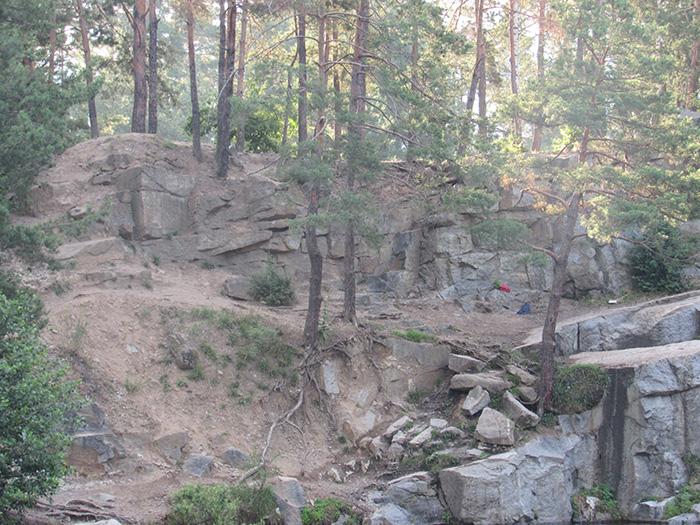 Тут також дерева ростуть прямо із каменю