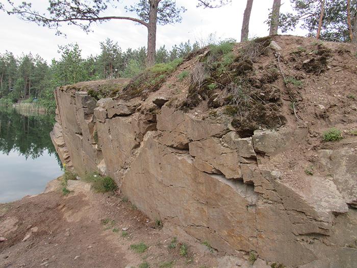Як в такому кам'яному ґрунті ростуть дерева?
